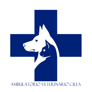 AMBULATORIO VETERINARIO CILEA
